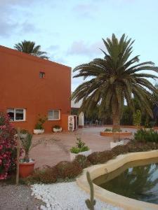 external image of Hotel & Restaurante Sa Palmera