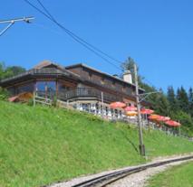 Les Sapins - Hotel, Montreux