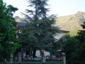 external image of Hotel La Barranca