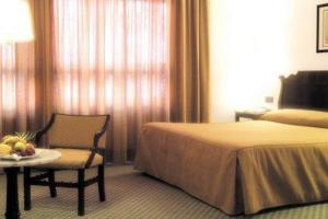 Room Image  1ofSercotel General Alava
