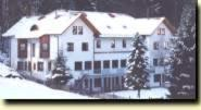 external image of Waldhotel Bellevue