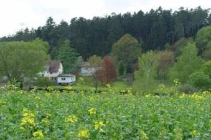 external image of China Haus Landgasthof zur Que...