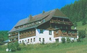 external image of Schwarzwaldgasthof Grüner Bau...