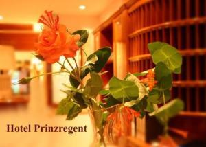 external image of Hotel Prinzregent Bad Griesbac...