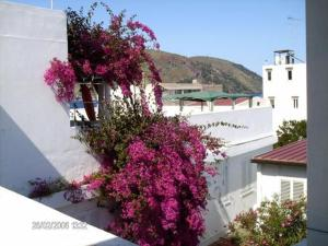 external image of Hotel Villa Augustus